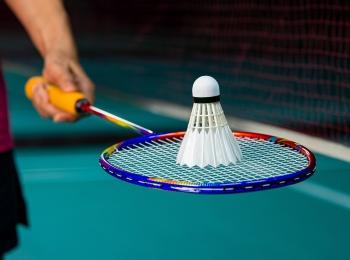 Val d'Europe Badminton (VEBAD)