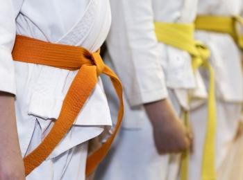Arts Martiaux Chessy Judo